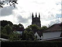 TQ8833 : Tenterden, St Mildred's Church by Helmut Zozmann