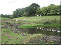 SX8282 : Pond at Shuttermoor  by Robin Stott