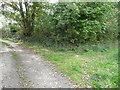 SN3958 : Footpath junction near Maen-y-groes by Jeremy Bolwell