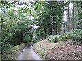 SX8283 : Lane to Shuttamoor  by Robin Stott