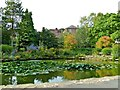 SO7875 : Ornamental Pond, Bewdley by Paul Buckingham