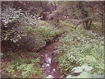 TQ1462 : Stream on Arbrook Common, Claygate by David Howard