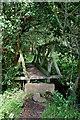 TQ0414 : Footbridge Near Rackham, Sussex by Peter Trimming