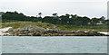 SV9015 : Rushy Point, Tresco, Isles of Scilly by John Rostron