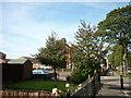 TA1230 : Southcoates Lane near Henley Drive by Ian S