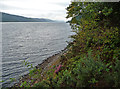 NH4822 : Loch Ness by John Allan