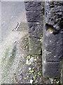ST6144 : Bench Mark, Cowl Street by Maigheach-gheal