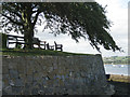 SX9272 : Wall, seats and tree, Keyworth Place  by Robin Stott