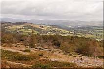 SD4488 : Whitbarrow Scar Crosthwaite in the Distance by Martin