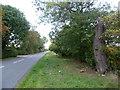 TL1094 : Bullock Road by Marathon