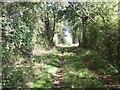 SO9942 : Bridleway near Smokey Farm, Cropthorne by Liz Stone