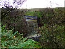 NS2472 : Cornalees waterfall by Thomas Nugent