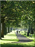 NT2572 : Path in Bruntsfield Links by kim traynor