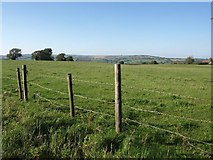 ST6161 : Meadowland beside the A368, opposite the entrance to Stanton Wick Farm by David Gearing