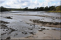 SN0403 : Carew River by Philip Halling