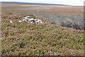 SE7798 : Spot height on Wheeldale Moor by Graham Horn