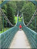 NN9357 : Wobbly bridge by william