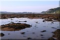 NT9853 : Low tide on the River Tweed at Berwick-upon-Tweed by Walter Baxter