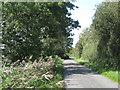 ST5784 : Rookery Lane  by Robin Stott