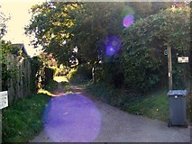 TM2844 : Footpath to Mill Road by Geographer