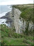 TA1974 : Cliffs at Bempton by Richard Law