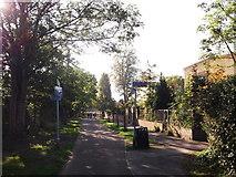 TQ3375 : Junction on Greendale  by David Anstiss