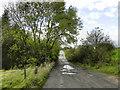 SD7516 : Plantation Road by David Dixon