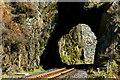 SH5946 : Welsh Highland Railway Tunnel, Aberglaslyn Pass, Gwynedd by Peter Trimming