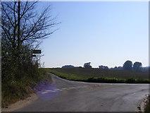 TM2743 : Mill Road, Waldringfield by Geographer
