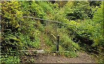 J4681 : Closed path, Crawfordsburn Country Park by Albert Bridge