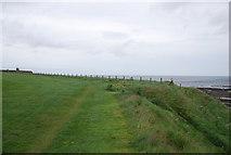 NU0052 : Berwickshire Coastal Path by N Chadwick