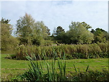 TF7633 : Fishing lakes north of Great Bircham, Norfolk by Richard Humphrey