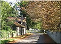 TL4349 : Newton: Town Street in October by John Sutton