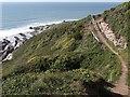 SX3952 : Coast path near Sharrow Point by Derek Harper