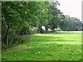 SJ7971 : Pasture off Batemill Lane, Jodrell Bank by nick macneill