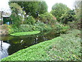 TQ2572 : River Wandle near Earlsfield by Marathon