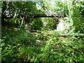 TQ3472 : Pissarro's bridge in Sydenham Hill Woods by Marathon