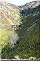 NZ6900 : Reeking Gill by Graham Horn