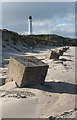 NJ2071 : Tank Traps at Covesea by Anne Burgess