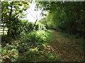 TL6557 : Footpath by Keith Evans