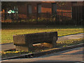 TQ4174 : Cattle trough on Eltham Green Road by Stephen Craven