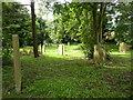 NZ3243 : St Laurence Church at Hallgarth, Graveyard by Alexander P Kapp