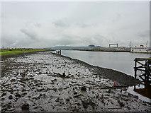 NZ5021 : River Tees by Alexander P Kapp