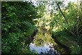 SP0683 : River Rea by N Chadwick