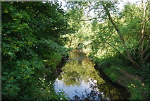 SP0683 : River Rea by N Chadwick
