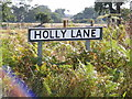 TM2541 : Holly Lane sign by Adrian Cable