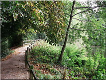 TQ4265 : Path in Hollydale Recreational Grounds by David Anstiss