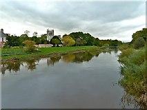 SE4843 : River Wharfe, Tadcaster by Paul Buckingham