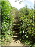 SP4802 : Steps to the Jarn Mound summit by andrew auger