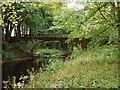 NZ3428 : Serpentine Bridge, Hardwick Hall Country Park by Andrew Curtis